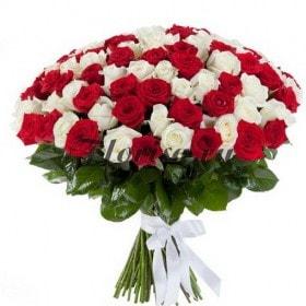 rosas brancas vermelhas