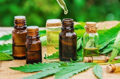 óleo de coco Cannabis dor ansiedade