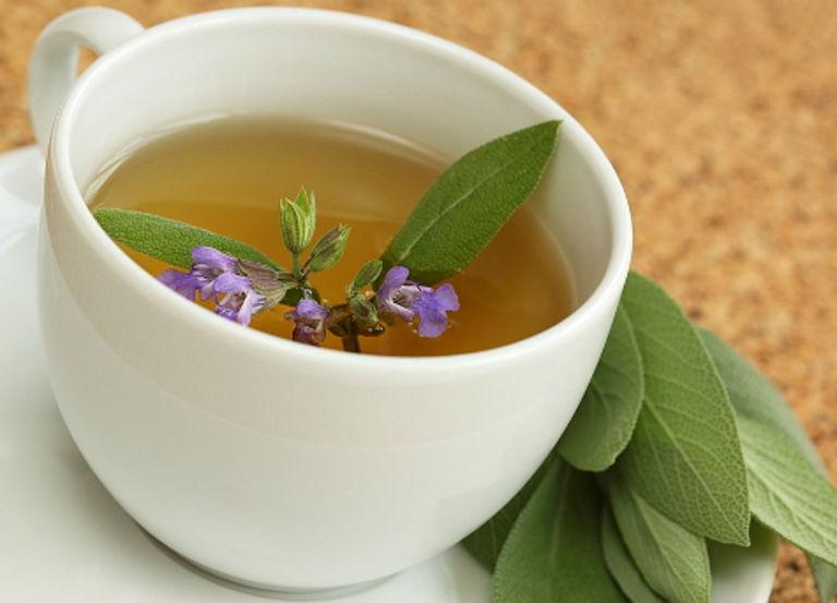 óleo essencial de sálvia Salvia sclarea Salvia officinalis pressão saúde cosmetologia pele cabelos