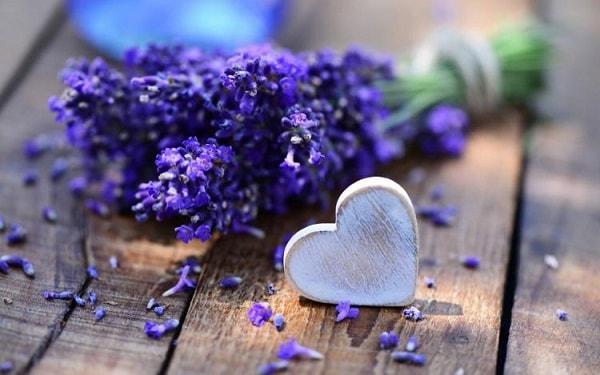 lavanda amor magia proteção saúde  stress