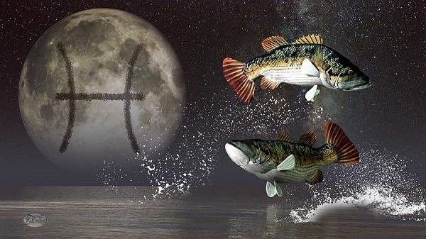 influência da lua  horóscopo  crianças astrologia peixes